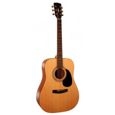 Parkwood W81-OP Акустическая гитара с чехлом