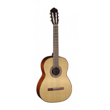 Parkwood PC90 Классическая гитара 4/4 с чехлом