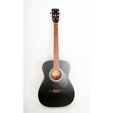 Parkwood PF51-BKS Акустическая гитара с чехлом
