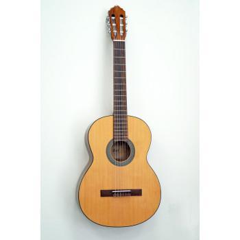 Cort AC100-SG Классическая гитара 4/4 глянцевая