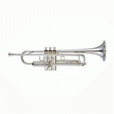 Yamaha YTR-4335GSII - труба Bb студенческая, средняя, gold brass bell, посеребренная