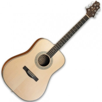 GregBennett ASDM - Акустическая гитара, dreadnougnt, анкер, ключ.(Индонезия)