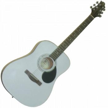 GregBennett D1/PW - Акуст. гитара, dreadnought, Nato, анкер, ключ.(Индонезия), цв. белый металик.