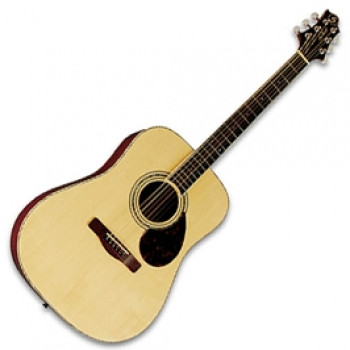 GregBennett D5 - Акустическая гитара, дредноут, цел. Ель, анкер, ключ.(Индонезия)